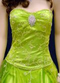 P0113 Lime/Green, Details